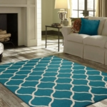 area rug cleaning Ocala by EZE Pro Cleaning